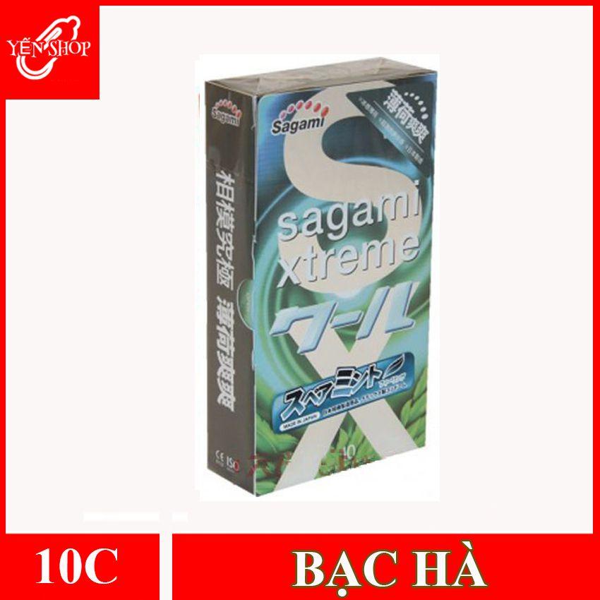 bao-cao-su-sagami-bac-ha